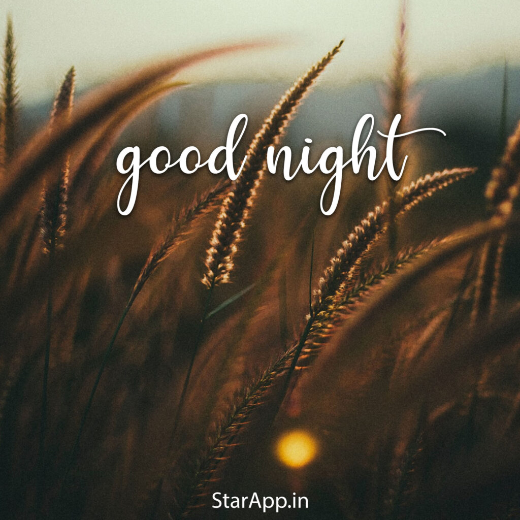 Ways to say have a good night cute ways to say goodnight