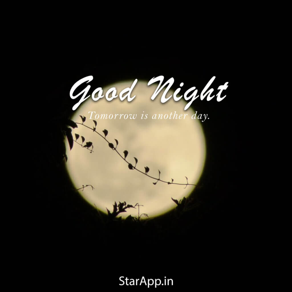 Good Night Quotes for Friends The Best Collection