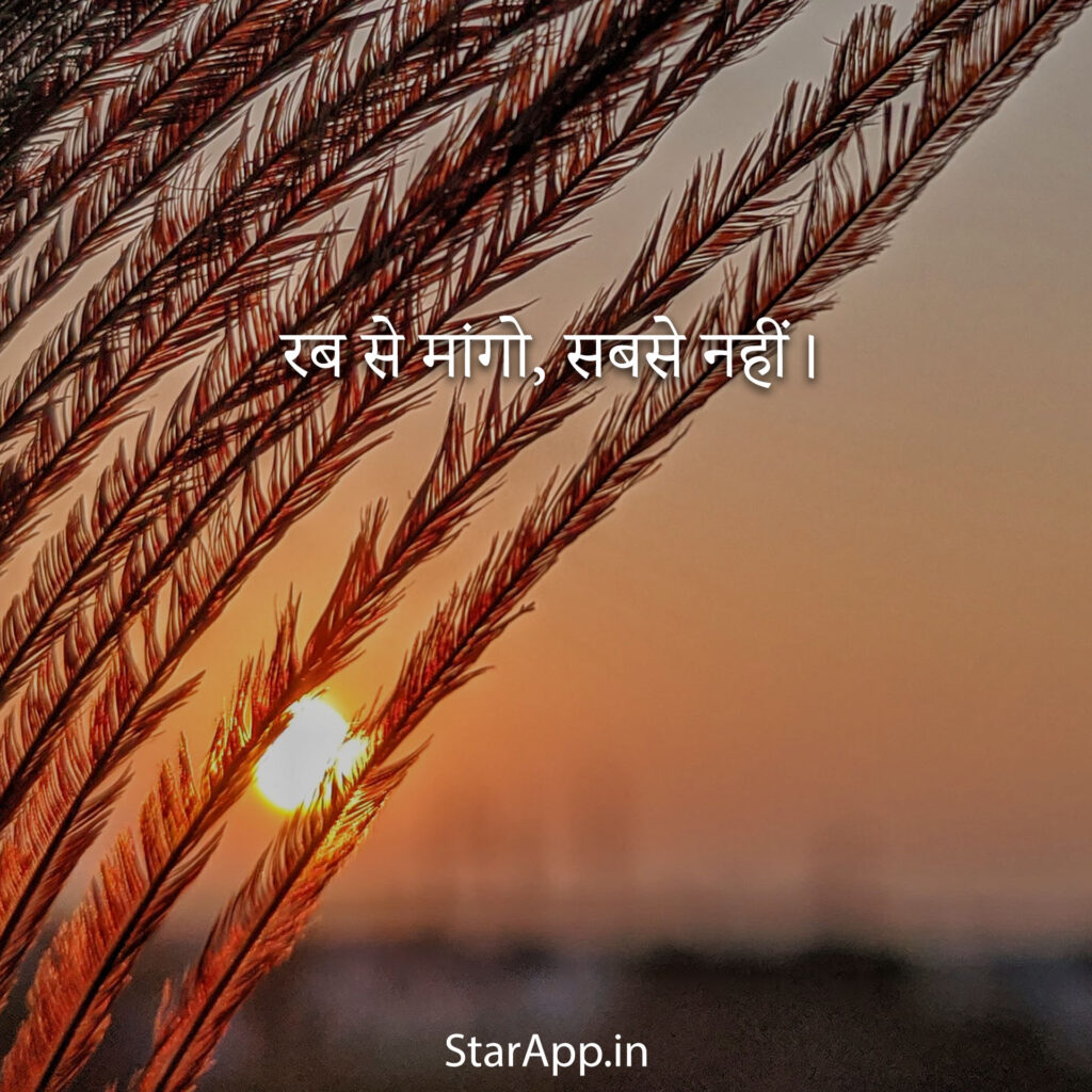Sweet Status About Life Latest WhatsApp Status images